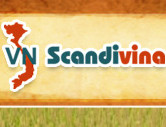 Scandivina trading & tourism services co.ltd