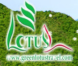 GreenLotus International Tourism