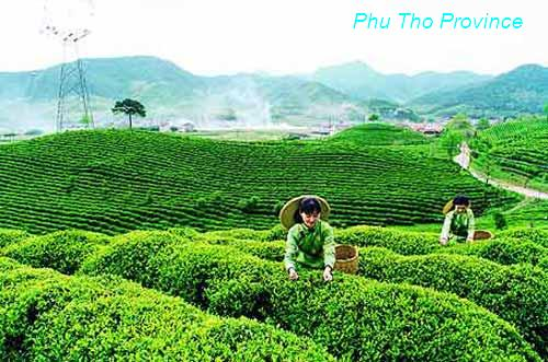 Phu Tho Vietnam  city photo : Phu Tho Vietnam Tourism Information