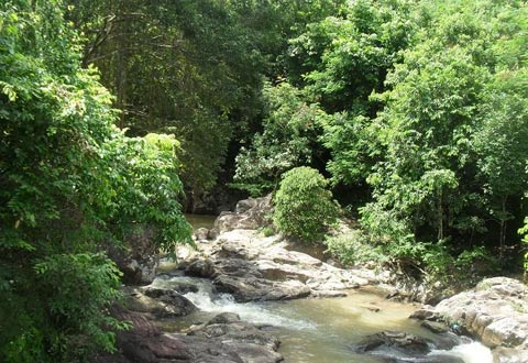 Enjoy Adventure Trip in Nuoc Vang Stream