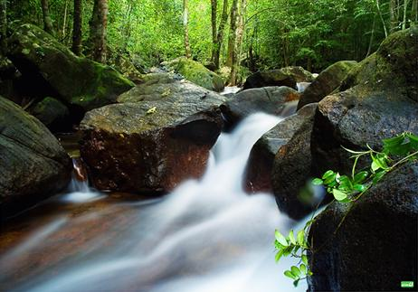 Tranh Stream- a Perfect Mixture of Stream, Beach, Forest and Mountain