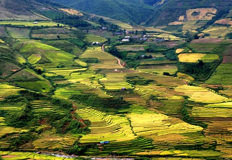 Traveling to Mu Cang Chai, Yen Bai to discover unique cultural characteristics of Mong people