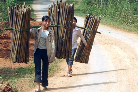 Fascinating beauty and Peace of Vietnam through photos